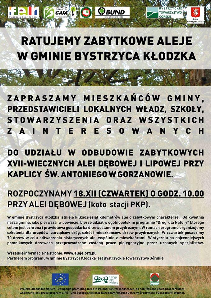 aleja-18-12-2014_800